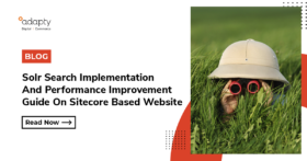 Solr Search Implementation And Performance Improvement Guide On Sitecore Based Website